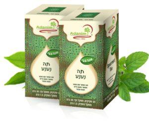 תה עם נענע (אורגני) עדנים - 2 יח'